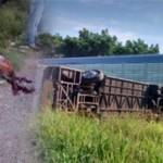 """Se impacta un """"Rápido Delicias"""" contra el tren, 2 muertos y 4 heridos"""